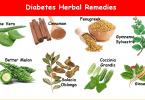 Diabetes Herbal Remedies diet